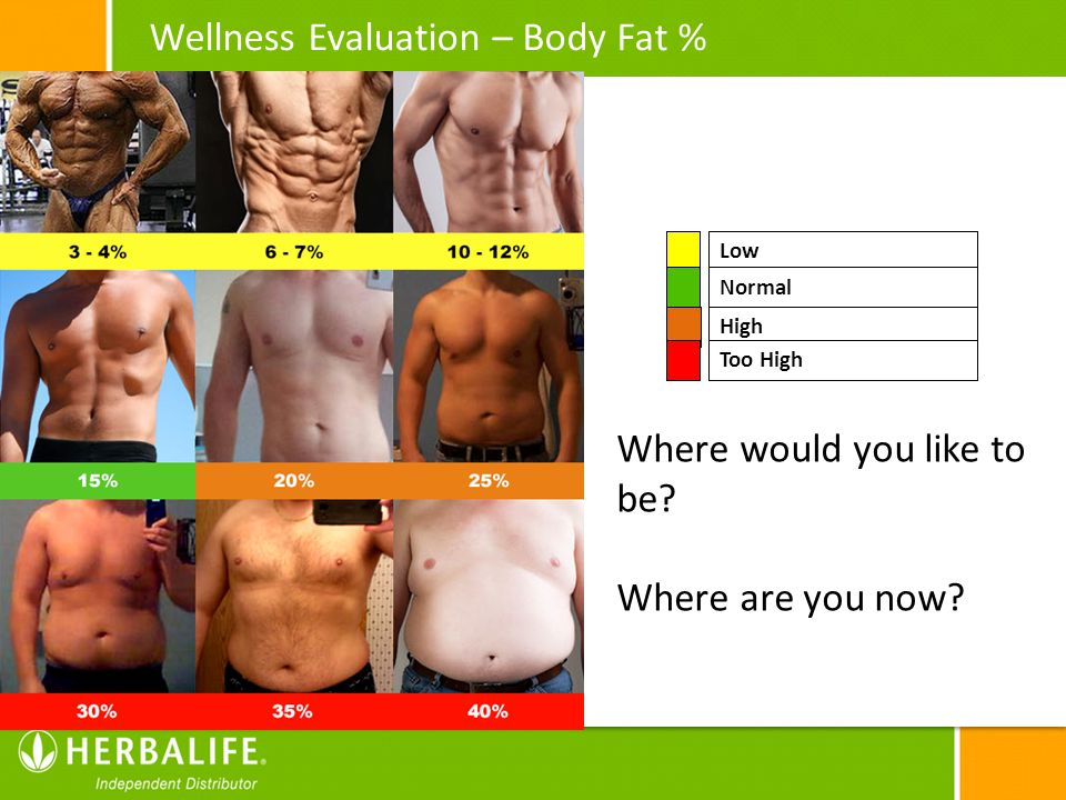 Wellness Evaluation – Body Fat %