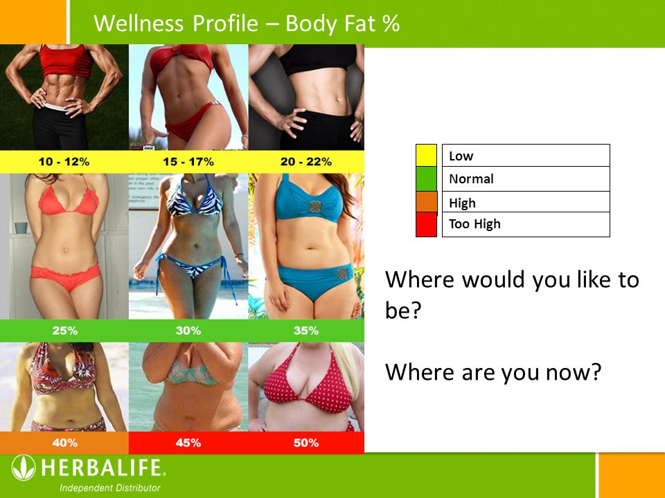 Wellness Profile – Body Fat %