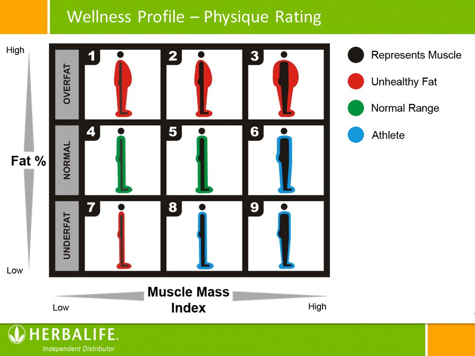 Wellness Profile – Physique Rating
