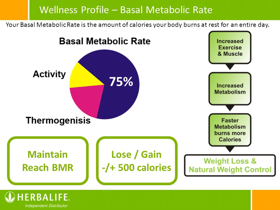 75% Wellness Profile – Basal Metabolic Rate Maintain Reach BMR