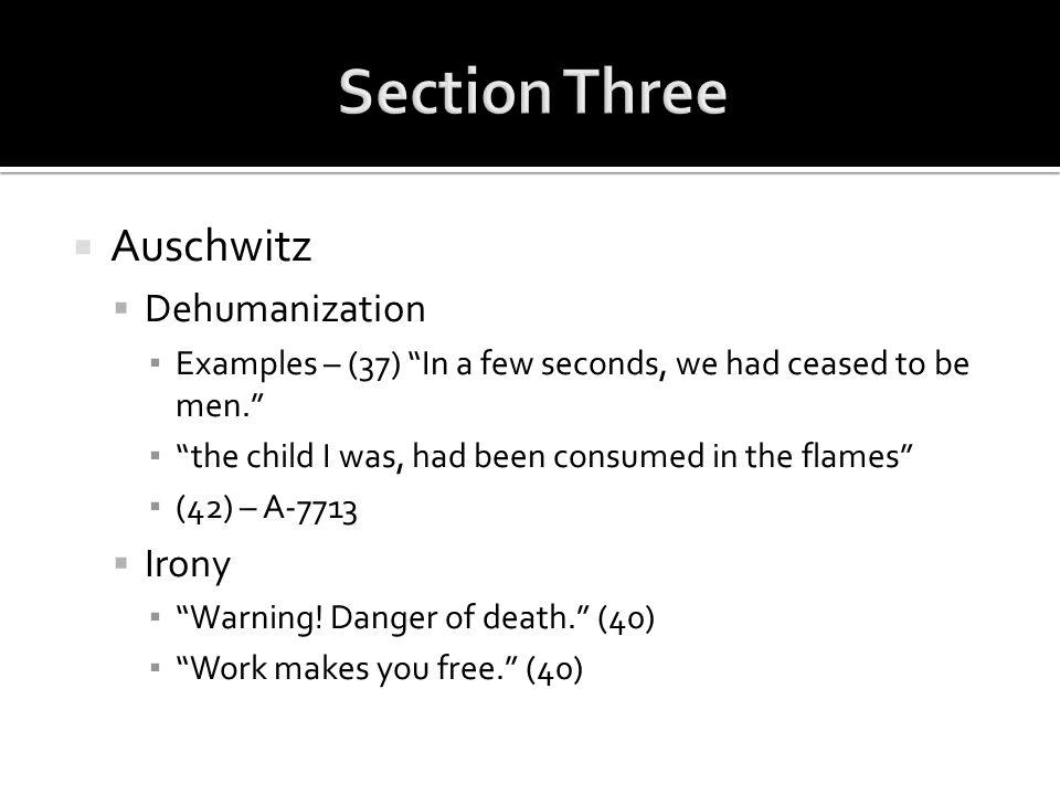 Section Three Auschwitz Dehumanization Irony