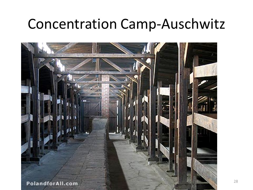 Concentration Camp-Auschwitz