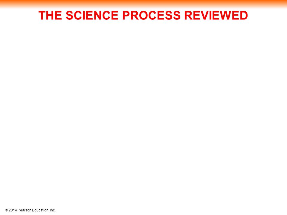 THE SCIENCE PROCESS REVIEWED