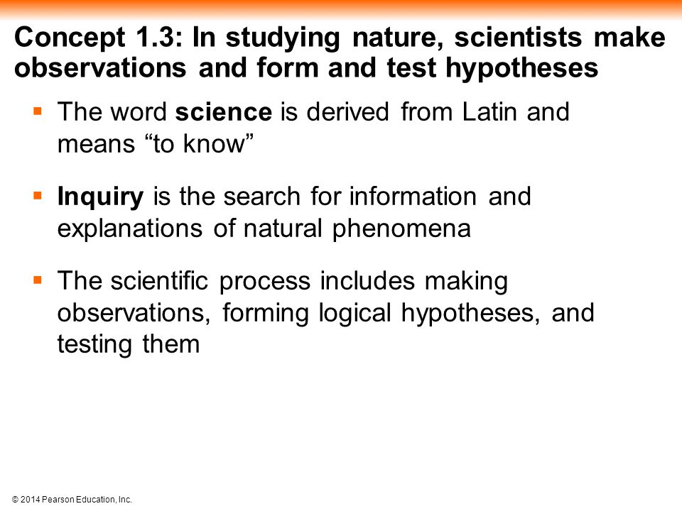Concept 1.3: In studying nature, scientists make observations and form and test hypotheses