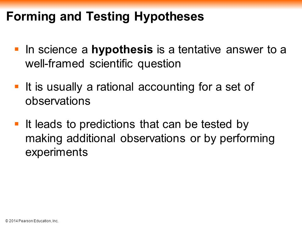 Forming and Testing Hypotheses