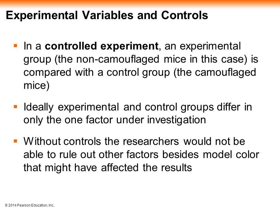 Experimental Variables and Controls