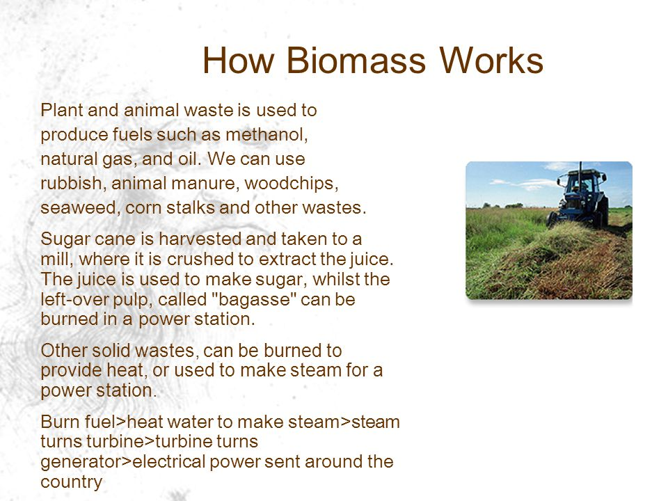How Biomass Works Plant and animal waste is used to