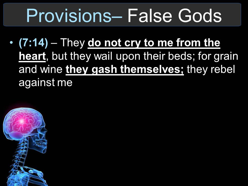 Provisions– False Gods