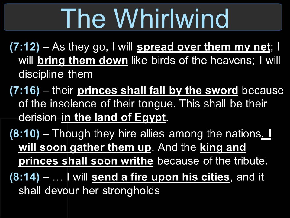 The Whirlwind (7:12) – As they go, I will spread over them my net; I will bring them down like birds of the heavens; I will discipline them.