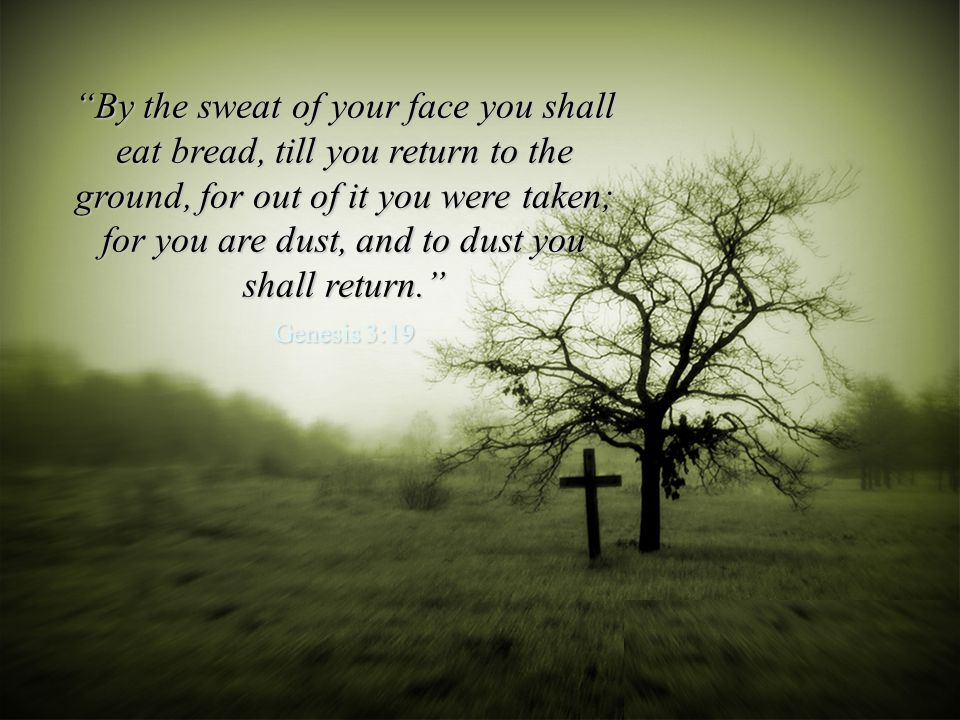By the sweat of your face you shall eat bread, till you return to the ground, for out of it you were taken; for you are dust, and to dust you shall return.