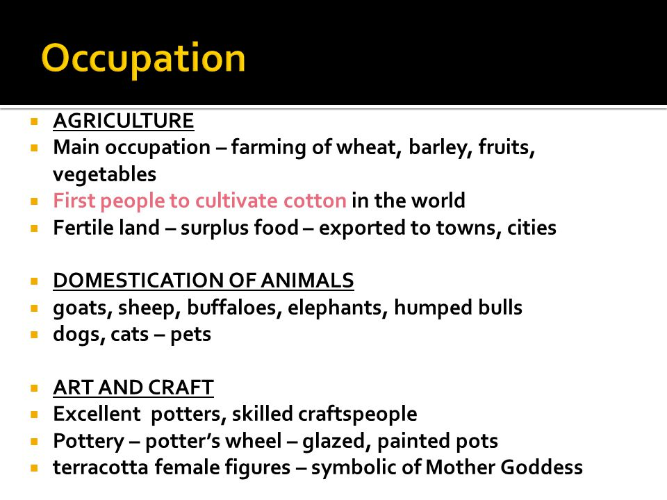 Occupation AGRICULTURE