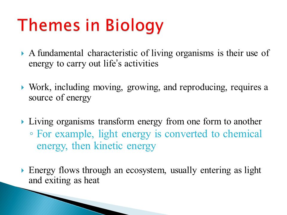 Themes in Biology A fundamental characteristic of living organisms is their use of energy to carry out life's activities.