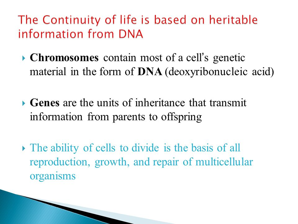The Continuity of life is based on heritable information from DNA