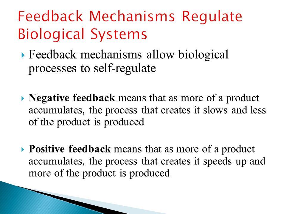 Feedback Mechanisms Regulate Biological Systems