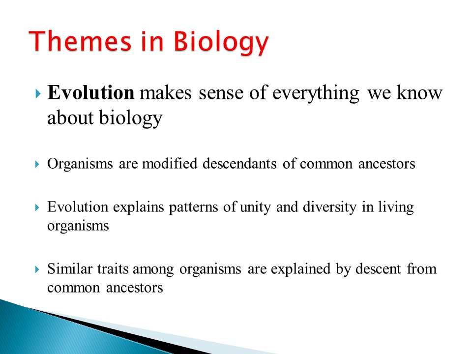 Themes in Biology Evolution makes sense of everything we know about biology. Organisms are modified descendants of common ancestors.