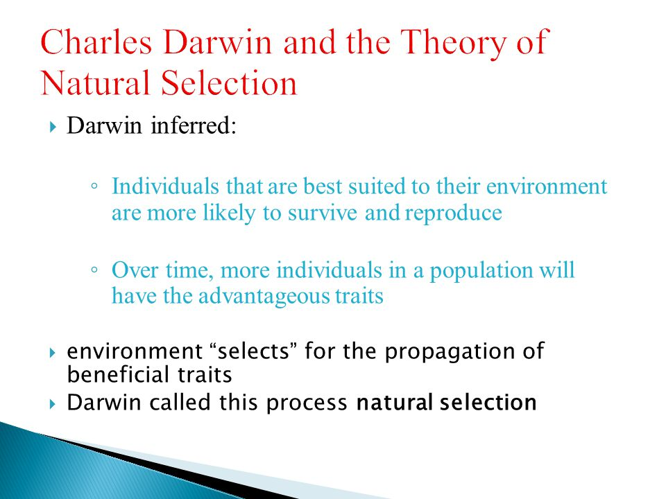 Charles Darwin and the Theory of Natural Selection
