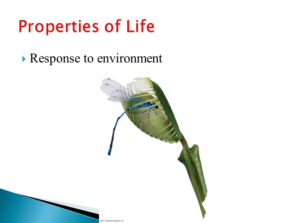 Properties of Life Response to environment