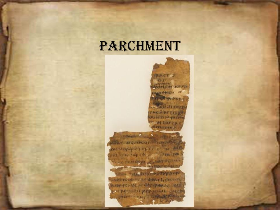 Parchment Parchment is made from animal skins.