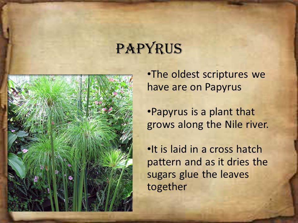 Papyrus The oldest scriptures we have are on Papyrus