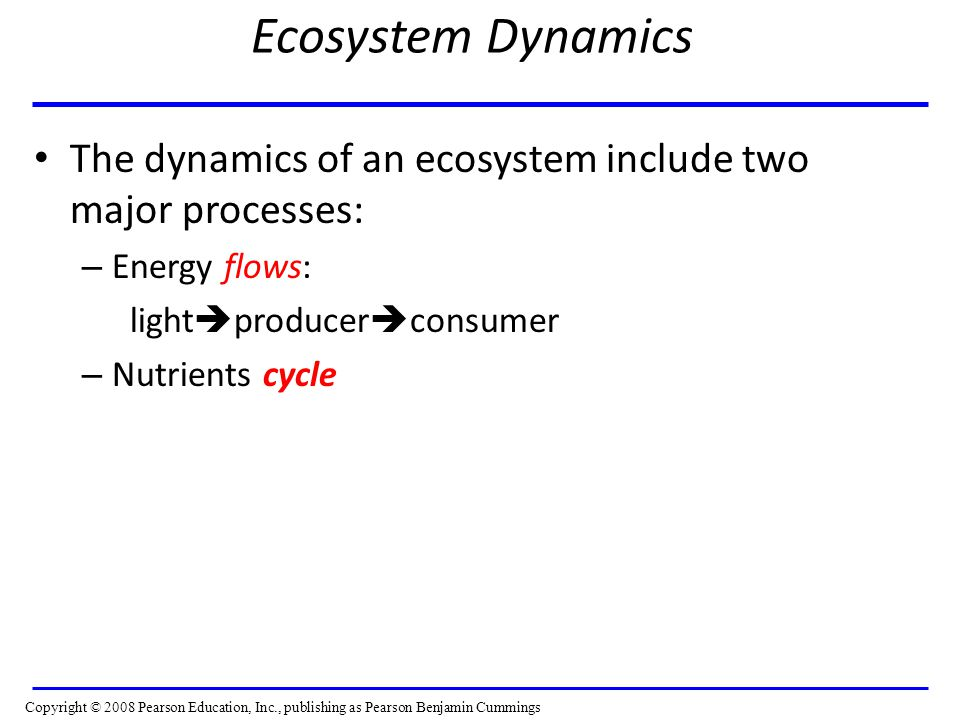 Ecosystem Dynamics The dynamics of an ecosystem include two major processes: Energy flows: lightproducerconsumer.