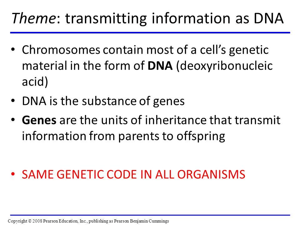Theme: transmitting information as DNA