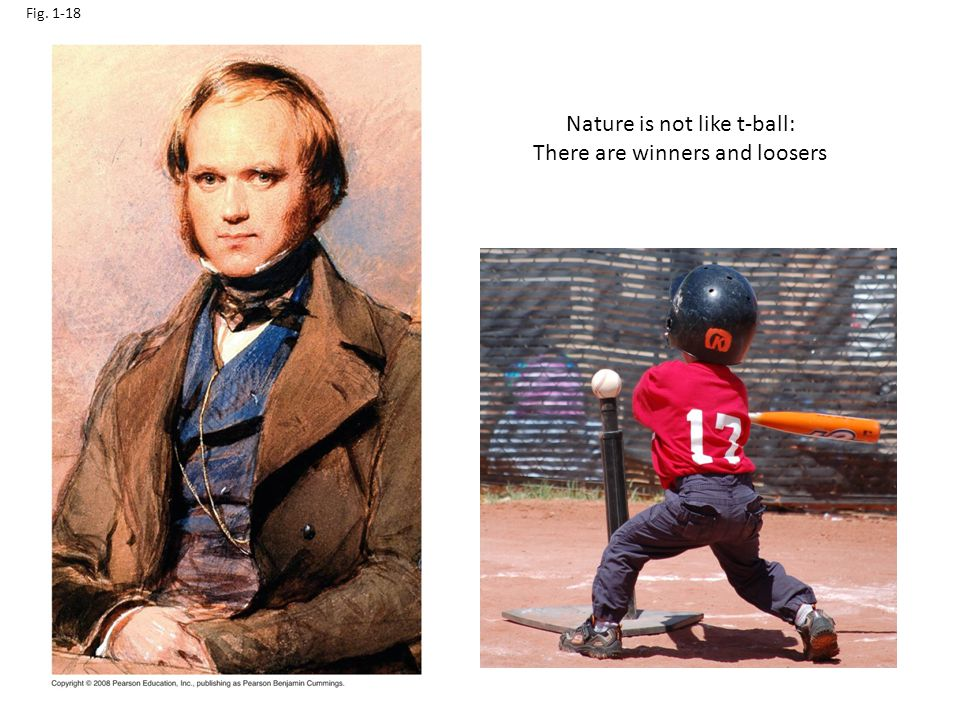 Nature is not like t-ball: There are winners and loosers