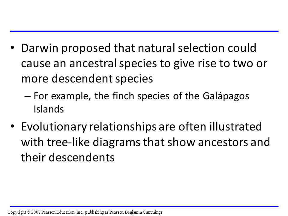 Darwin proposed that natural selection could cause an ancestral species to give rise to two or more descendent species