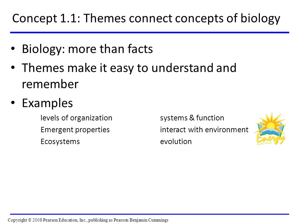 Concept 1.1: Themes connect concepts of biology