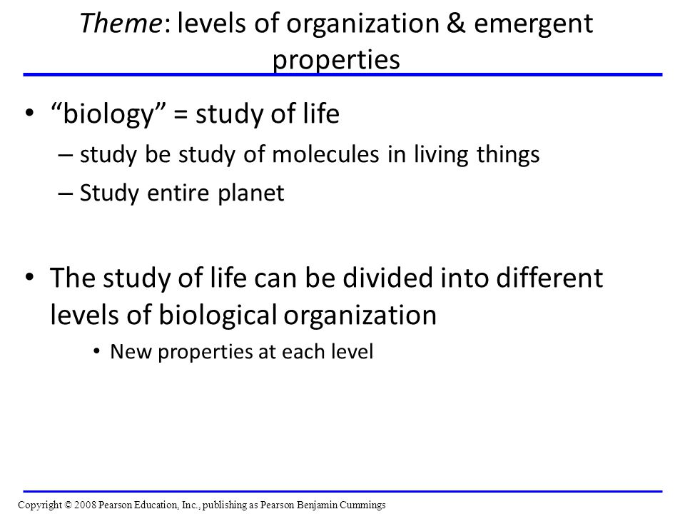 Theme: levels of organization & emergent properties