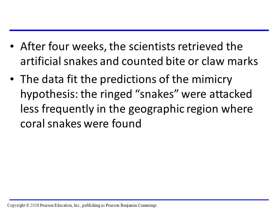 After four weeks, the scientists retrieved the artificial snakes and counted bite or claw marks
