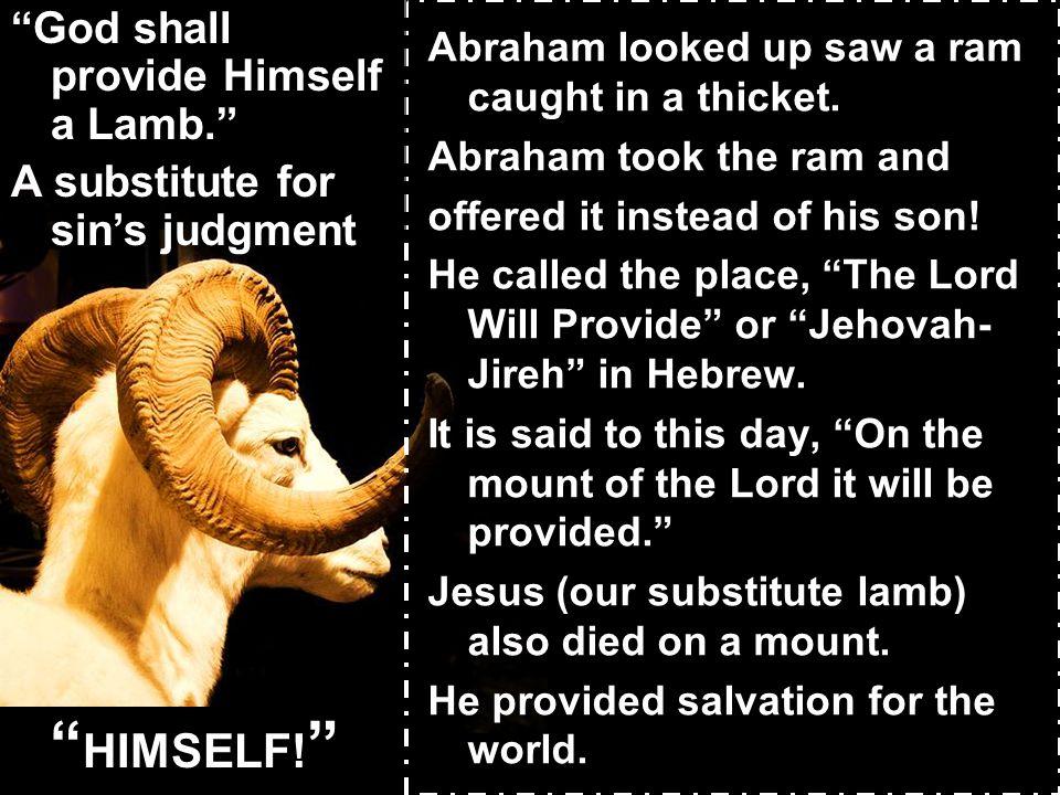 HIMSELF! God shall provide Himself a Lamb.