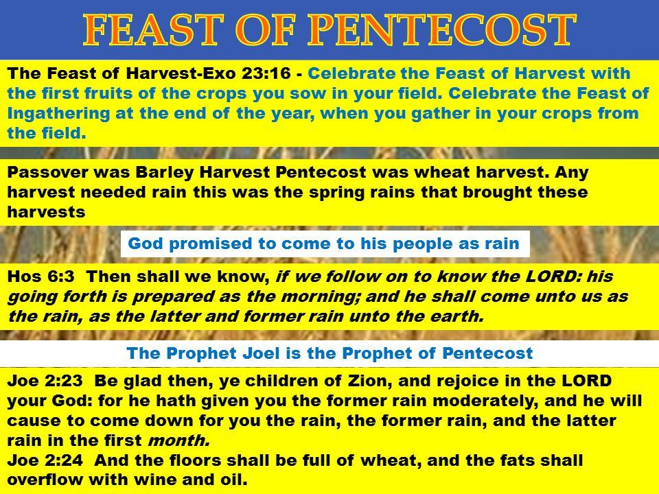 The Prophet Joel is the Prophet of Pentecost