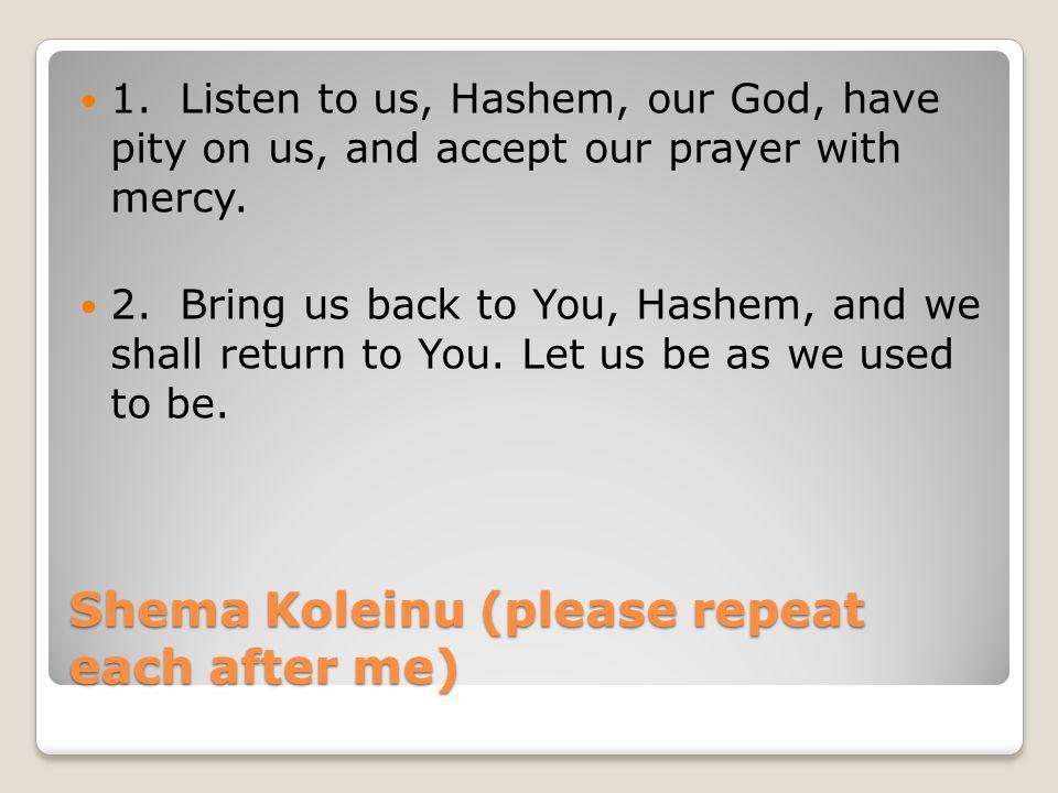Shema Koleinu (please repeat each after me)