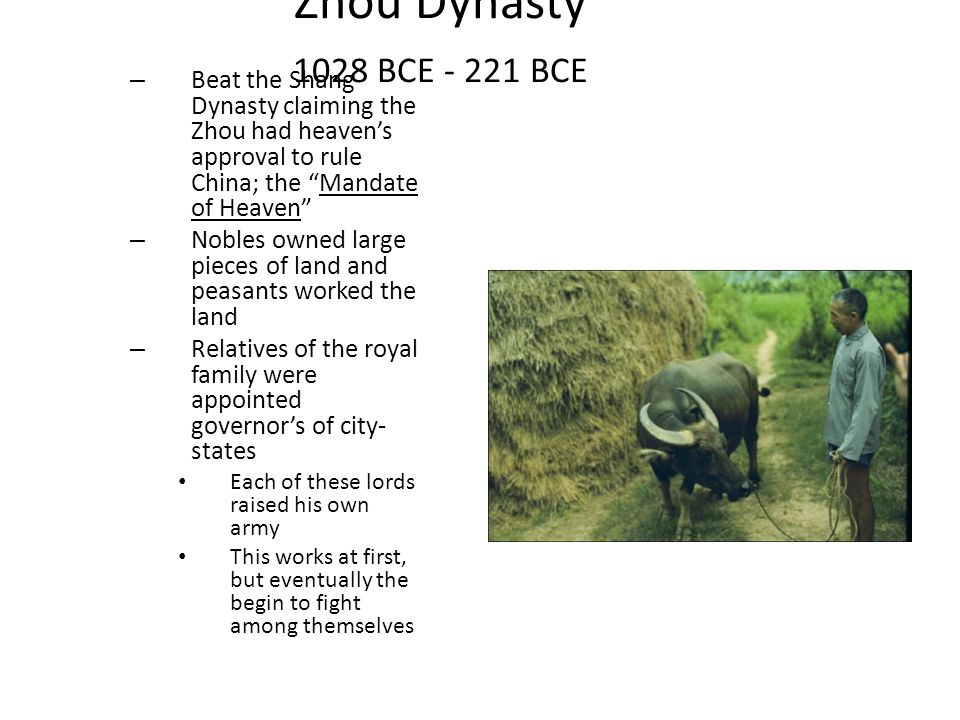 Zhou Dynasty 1028 BCE - 221 BCE Beat the Shang Dynasty claiming the Zhou had heaven's approval to rule China; the Mandate of Heaven