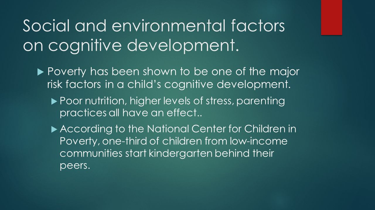 "environmental effects on the childrens cognitive Child cognitive development and socioeconomic status: what do we know  cognitive stimulation, environmental toxins or nutrition, or from corresponding differences in the prenatal environment""  targeting families at the low end of the income distribution may be most likely to lead to observable differences in children's brain and."