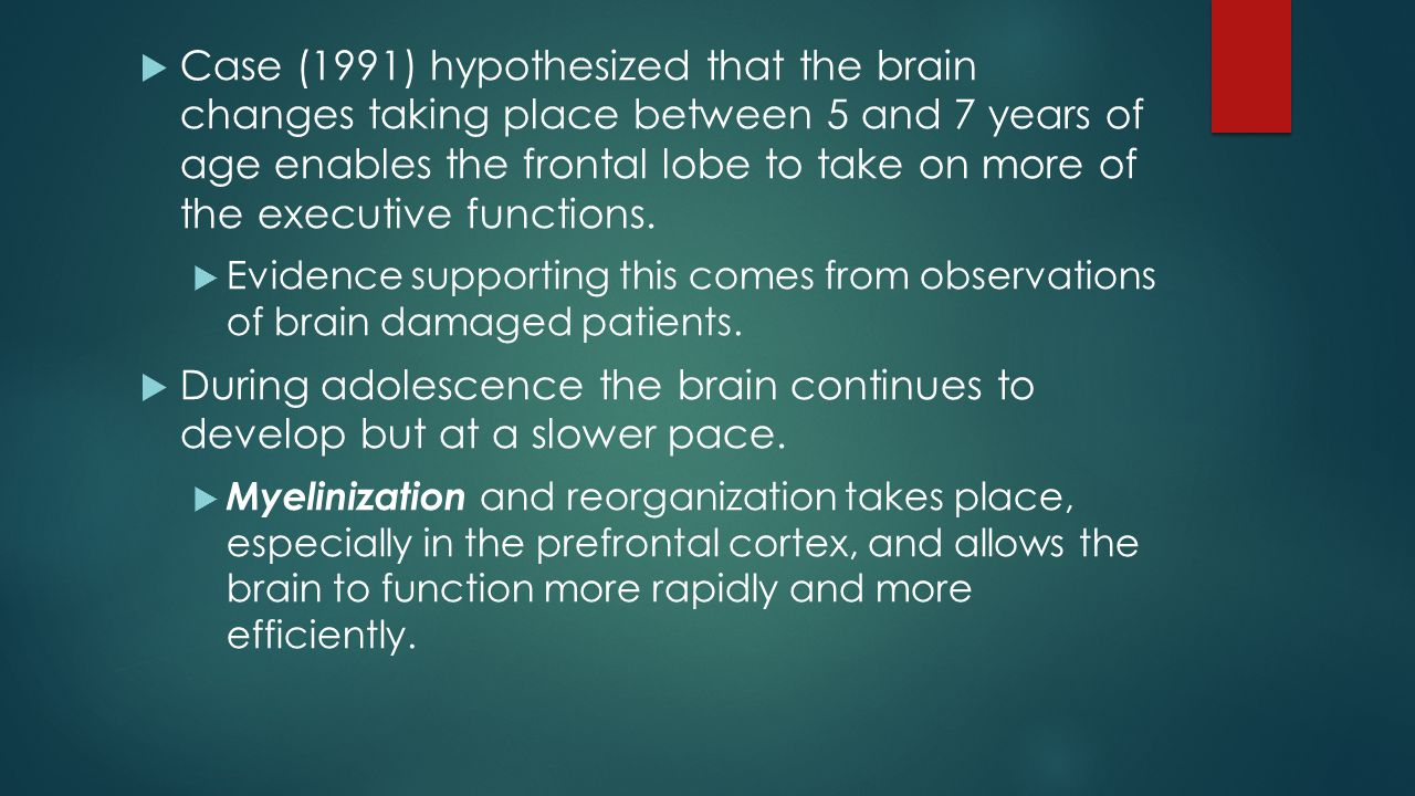 Case (1991) hypothesized that the brain changes taking place between 5 and 7 years of age enables the frontal lobe to take on more of the executive functions.