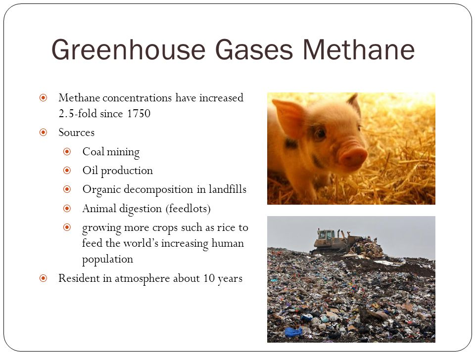 Greenhouse Gases Methane