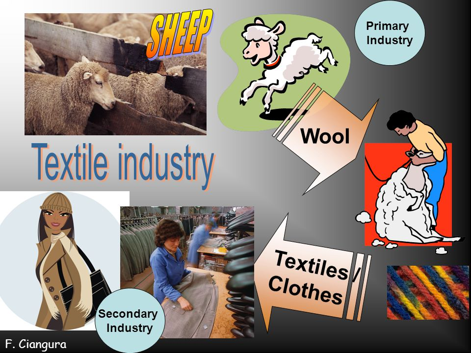 SHEEP Textile industry Wool Textiles / Clothes Primary Industry