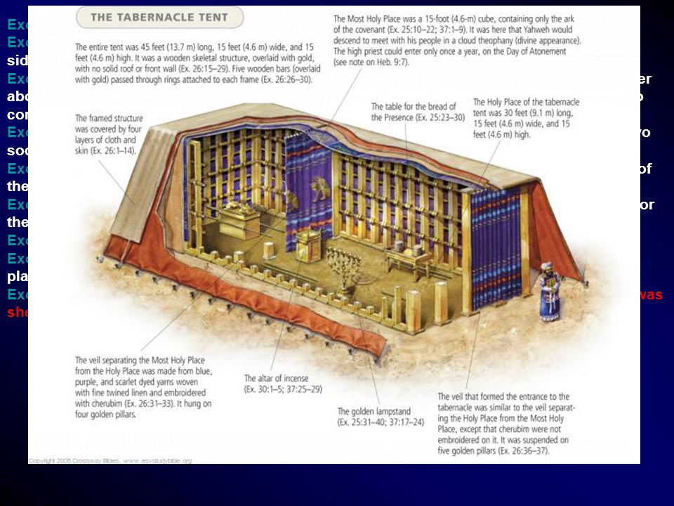 Exo 26:22 And for the sides of the tabernacle westward thou shalt make six boards.