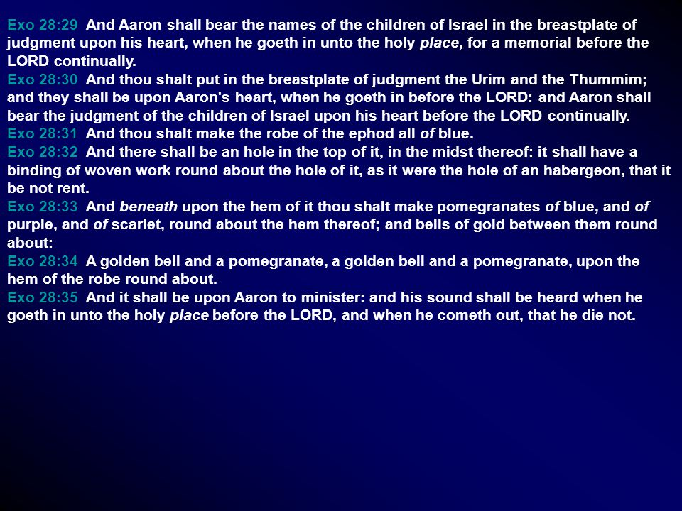 Exo 28:29 And Aaron shall bear the names of the children of Israel in the breastplate of judgment upon his heart, when he goeth in unto the holy place, for a memorial before the LORD continually.