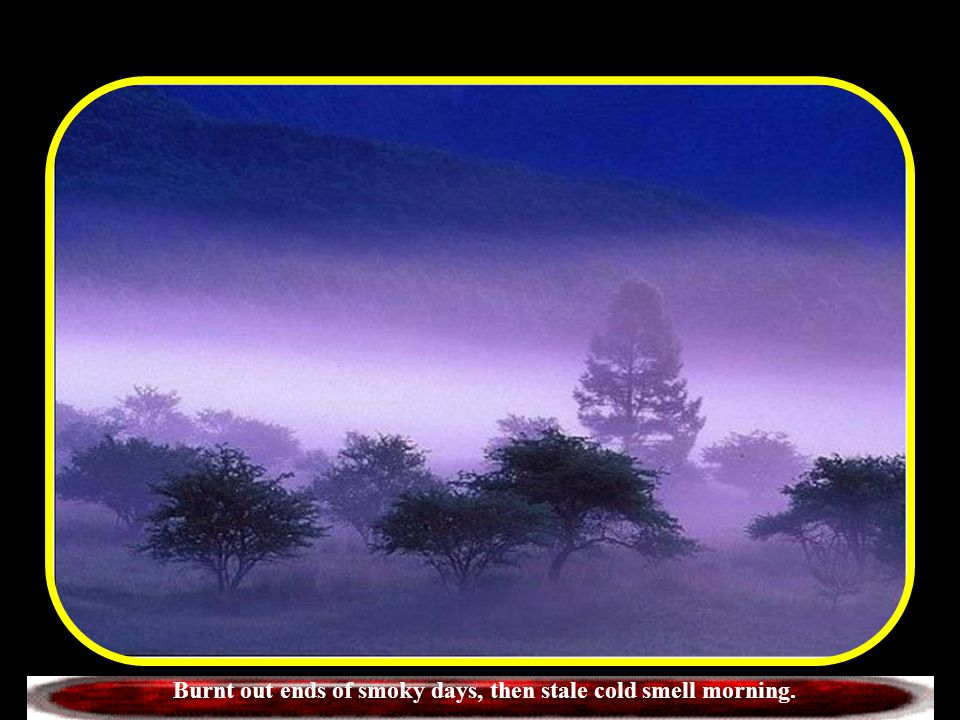 Burnt out ends of smoky days, then stale cold smell morning.