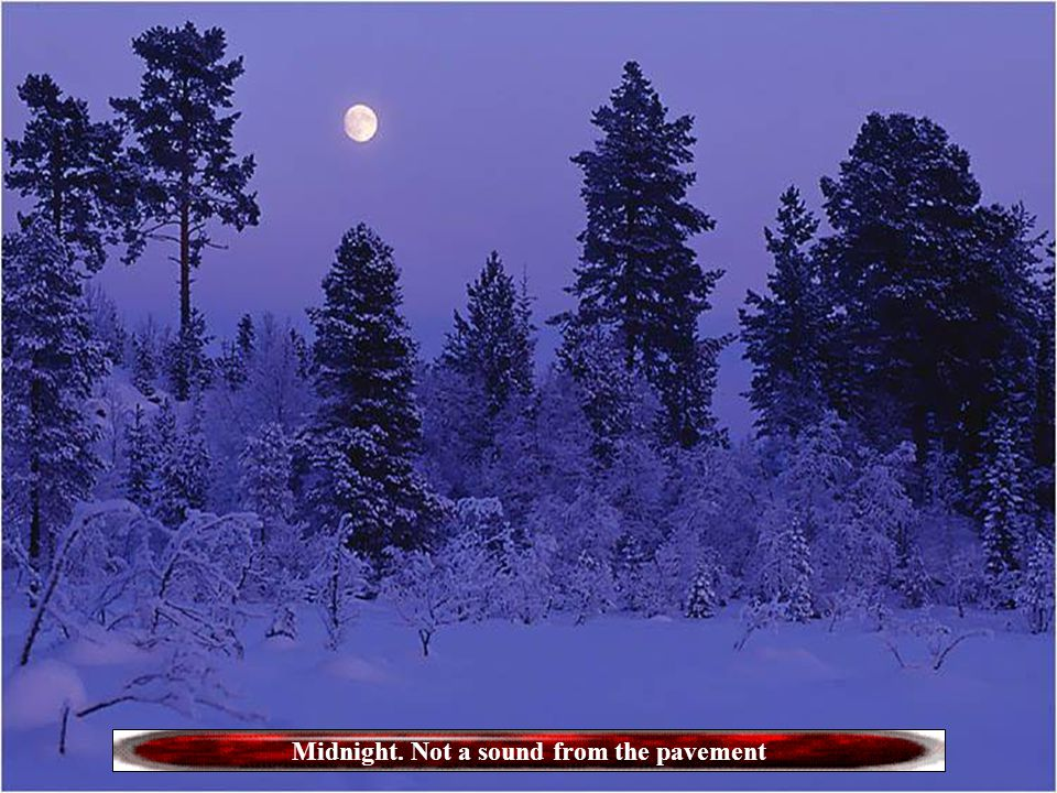 Midnight. Not a sound from the pavement
