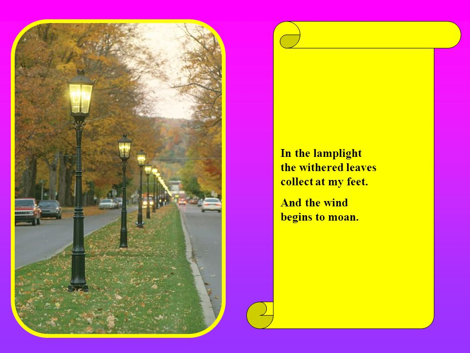 In the lamplight the withered leaves collect at my feet.