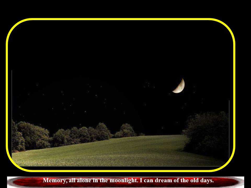 Memory, all alone in the moonlight. I can dream of the old days.