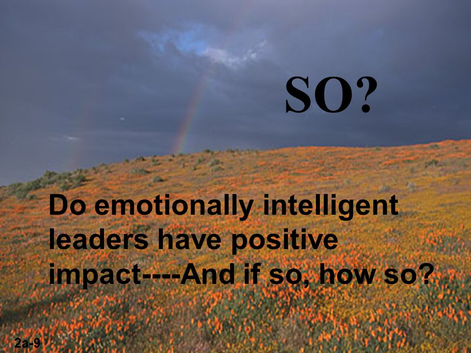 SO Do emotionally intelligent leaders have positive impact----And if so, how so 2a-9