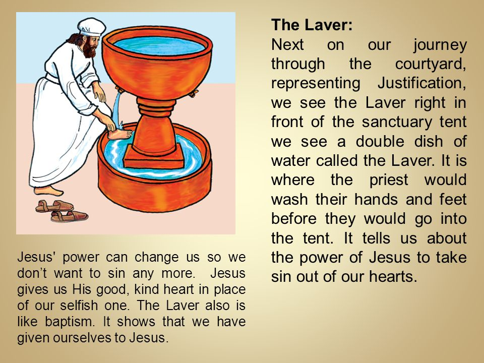 The Laver: