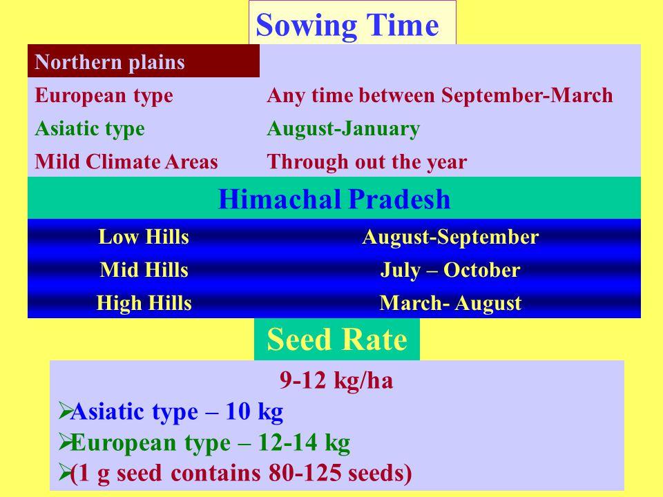 Sowing Time Seed Rate Himachal Pradesh 9-12 kg/ha Asiatic type – 10 kg