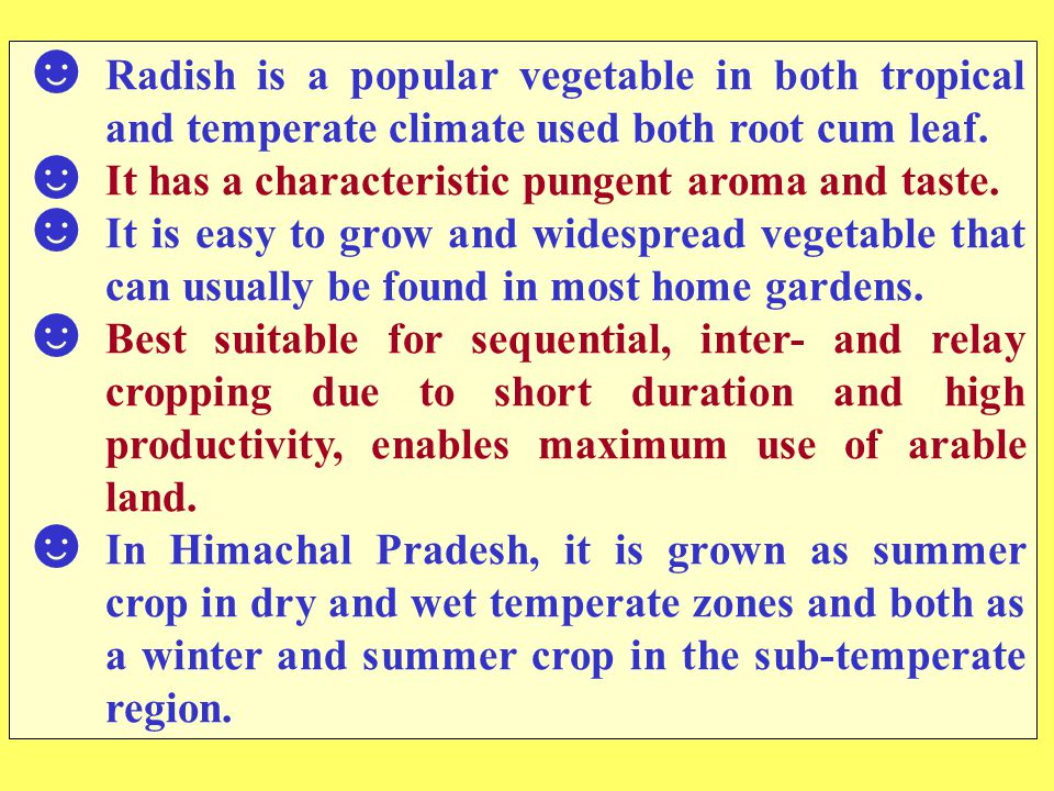 Radish is a popular vegetable in both tropical and temperate climate used both root cum leaf.