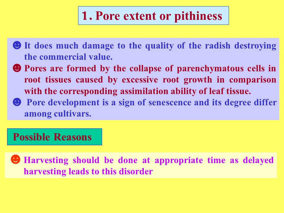 1. Pore extent or pithiness