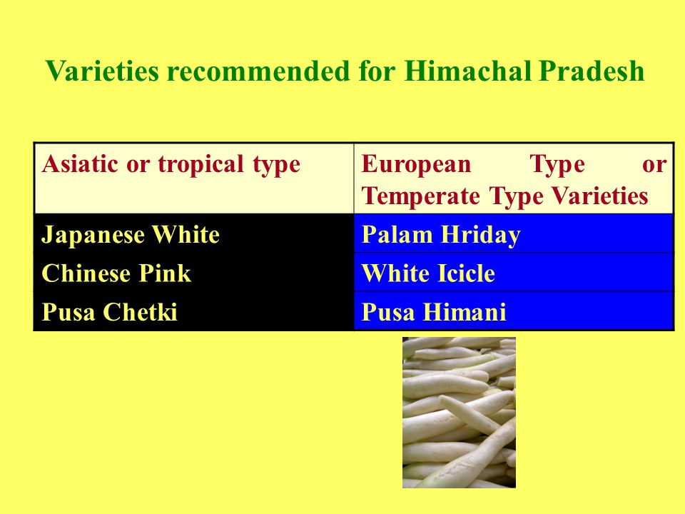 Varieties recommended for Himachal Pradesh